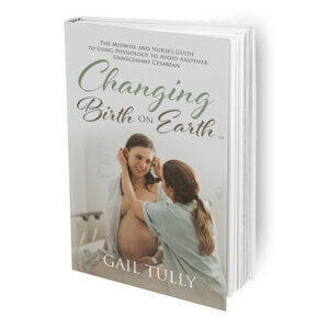 changing birth on earth book