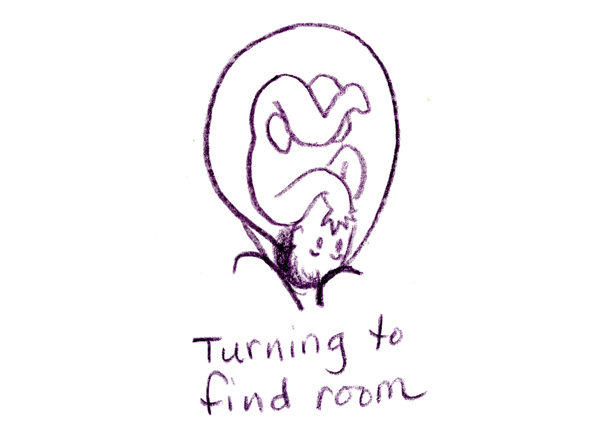 turning to find room by gail tully